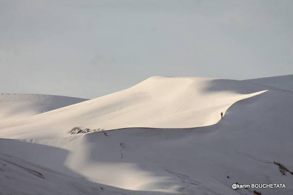 sahara-snow-white.jpg